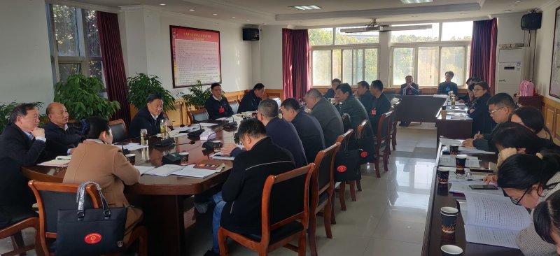 怀宁县高河代表团认真审议县政府有关工