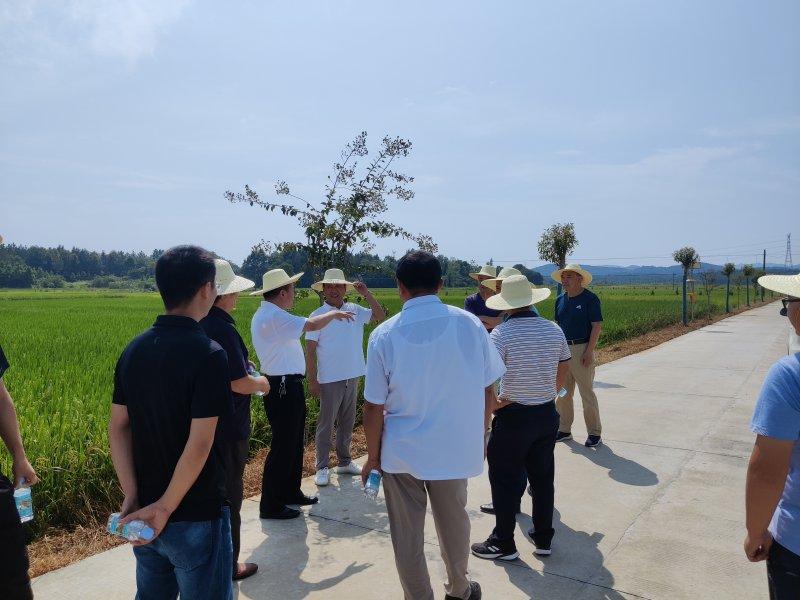 县人大常委会调研高标准农田建设工作